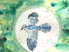 "Original Watercolor Painting ""Blue Jay"" 7x10 inch bird animal nature kids room"