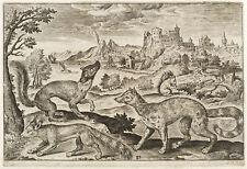 MARDER HERMELIN EICHHÖRNCHEN - Sadeler nach Collaert - Kupferstich 1620-1622