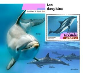 Guinea Marine Animals Stamps 2020 MNH Dolphins Pacific White-Sided Dolphin 1v SS