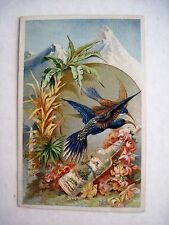 Pretty Perfume Trade Card Florida Water The Flowers of Paradise w Lovely Birds *