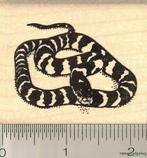 California King Snake Rubber Stamp H11702 WM