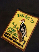 Boy Scouts Great Smoky Mountain Council Sew on Patch