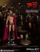 MILLER 300 King Leonidas Gerald Butler Action Figure 1/6 Star Ace Toys Sideshow