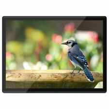 Quickmat Plastic Placemat A3 - Blue Jay Bird North America USA  #21257