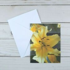 Greeting Note Cards Yellow Lily Floral 6 Count Blank Inside