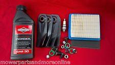 """Victa Lawn Mower19"""" Service Kit, Blades CA09319S, Filters 491588s, Plug, Oil"""