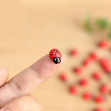 Stylish Mini Ladybug Decoration Lovely Beatles Micro Landscape Gardening 10 pcs