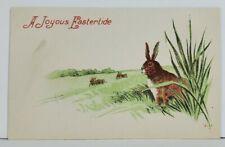 Joyful Easter Sweet Bunny in the Tall Grass Postcard N12