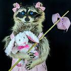 BR700 Anthropomorphic Taxidermy oddities curiosities Raccoon collectible display
