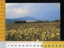 44503] TRASPORTI TRENI - FERROVIA CENTRALE UMBRA - TERNI - PERUGIA - S. SEPOLCRO