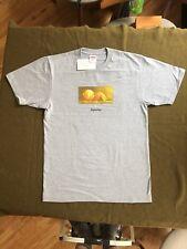 Supreme Orange Peel T-Shirt Medium NEW Heather Grey