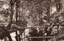 Stepping Stones - Jesmond Dene - Newcastle-on-Tyne - Original Postcard (348)