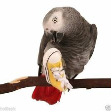 1 MINI SNEAKER BIRD TOY parrot craft cage craft toys dog cat doll