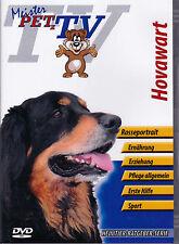 Hovawart - Meister PETz TV *DVD*NEU* Ratgeber - Hund