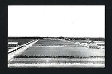 Cass Lake Minnesota MN c1939 RPPC US Forest Service Tree Nurseries and Barns
