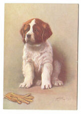 Dog Collectable Animal Postcards