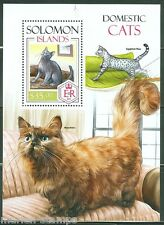 SOLOMON ISLANDS  2013  DOMESTIC CATS  SOUVENIR SHEET  MINT NH