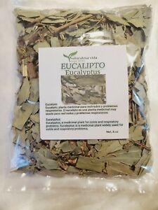 Hojas de Eucalipto 8,oz - Envio Gratis te,Eucalyptus leaves,eucalyptu