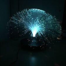 Glasfaser Blumen Lampe  Farbwechsel Beleuchtung  Fiberglas Beleuchtung