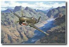 The Decisive Moment by Roy Grinnell- Signed by 23 AVG Flying Tigers- P40 Warhawk