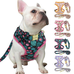Floral Nylon Dog Harness Vest and Lead set with Custom Personalized Dog Collar