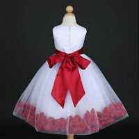 US Seller White Pageant Baby Wedding Flower Petals Girl Dress 12M 18M 2 4 6 8 10