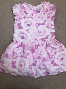 Bnwot Gymboree Lined Dress 🌸💗💜 Size 3 Years