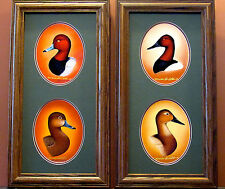Ducks Unlimited Redhead Head & Canvasback Head Study Collage By Daniel F. Heuer