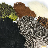 HARELINE HEN SADDLE - Fly Tying Soft Hackle Feathers - 6 Colors Available NEW!