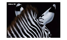 "Zèbre 30 MATTED PRINT zebra wildlife animal painting Sandrine Curtiss art 4x6"""