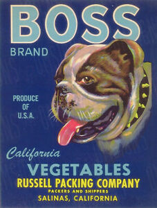 Vintage Boss Vegetable Label Reproduction Metal Sign FREE SHIPPING