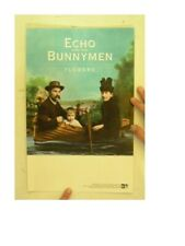 Echo And The Bunnymen Poster & Bunny Men Flowers