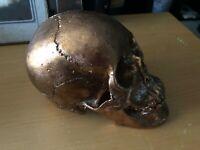 ODDITIES & MORBID GOTHICNESS: Gold Colered Heavy Metal Human Skull Gothic Oddity