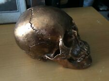 ODDITIES & MORBID GOTHICNESS: Gold Colered Heavy Metal Human Skull Gothic Oddity