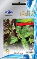 2380 seeds Thai Holy Red Basil Kaprao,Ocimum Sanctum Tulasi Herb Food Spicy yard