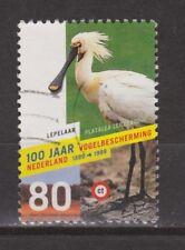 NVPH Nederland Netherlands 1811 used Lepelaar, spoonbill, spatule 1998