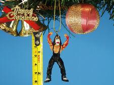 Christbaumschmuck Ornament Home Decor WWE Wrestling Wrestler Jeff Hardy K1041 A8