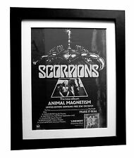 SCORPIONS+Animal Magnetism+POSTER+AD+RARE ORIGINAL 1980+FRAMED+FAST+GLOBAL SHIP
