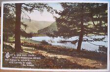 Postcard A LONE IRISH GLADE Lovers Meet Lake Eva Brennan Valentine Ireland Carbo