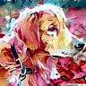 5D Diamond Painting Dog Cross Stitch Embroidery Rhinestone DIY Crafts Home Decor