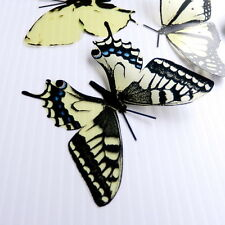 100 Pack Butterflies - Cheesecake - 5 to 6 cm - Topper, Weddings, Crafts, Cards