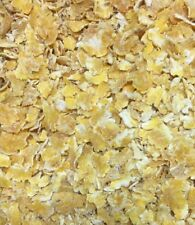 Steam Flaked Corn Premium Large 20 Lb Box Steamed Flake Maize Pound Home Brew