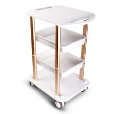 Beauty Salon Spa Styling Station Trolley Equipment Rolling Storage Tray Cart