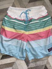 New listing Vineyard Vines Mens Small Chappy Swim Trunks Colorful Stripes