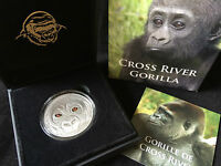 2013 CROSS RIVER GORILLA BABY Real Eye Effect Silver Coin 1000 Francs Cameroon