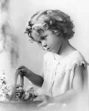 Shirley Temple looking in a basket child movie star 8x10 photo