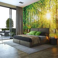Fototapete Tapete Wandbild F19447 Wald Natur Bäume Sonnenstrahlen Frühling Baum