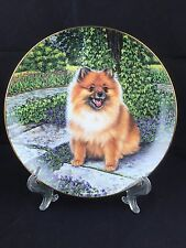 'Pom in Bloom' pomeranian danbury mint limited edition plate Higgins Bond