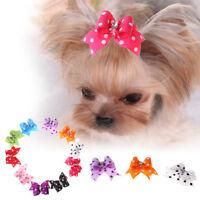 10x Haustier Hundehaarspange Haarklammer Haarschleife Haarschmuck Hund Katze