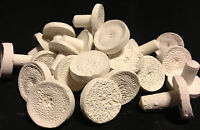 100 PREMIUM CERAMIC FRAG PLUGS FOR ALL YOUR PROPAGATION NEEDS